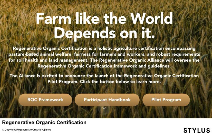 certification_stylus4.jpg