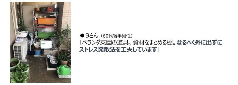 n1-nikki_03.jpg