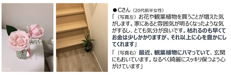 n1-nikki_04.jpg