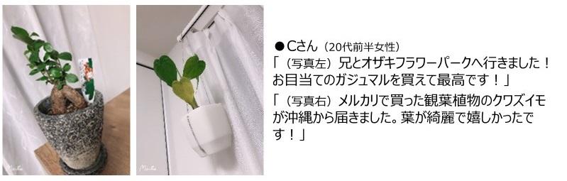 n1-nikki_05.jpg