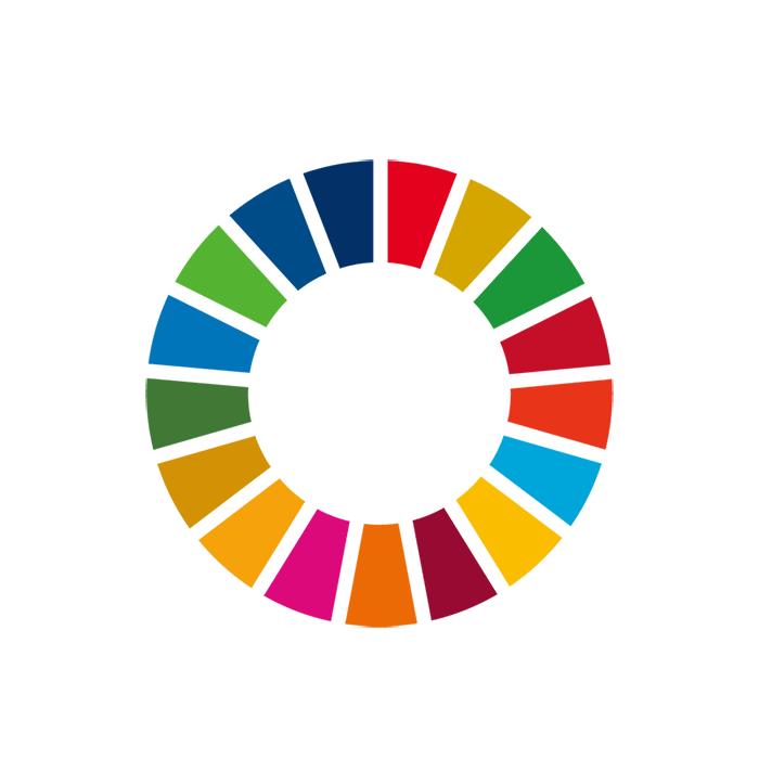 SDGsカラーホイールイメージ図
